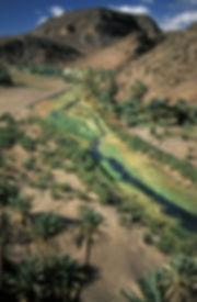 oasis de fint ouarzazate-3.jpg