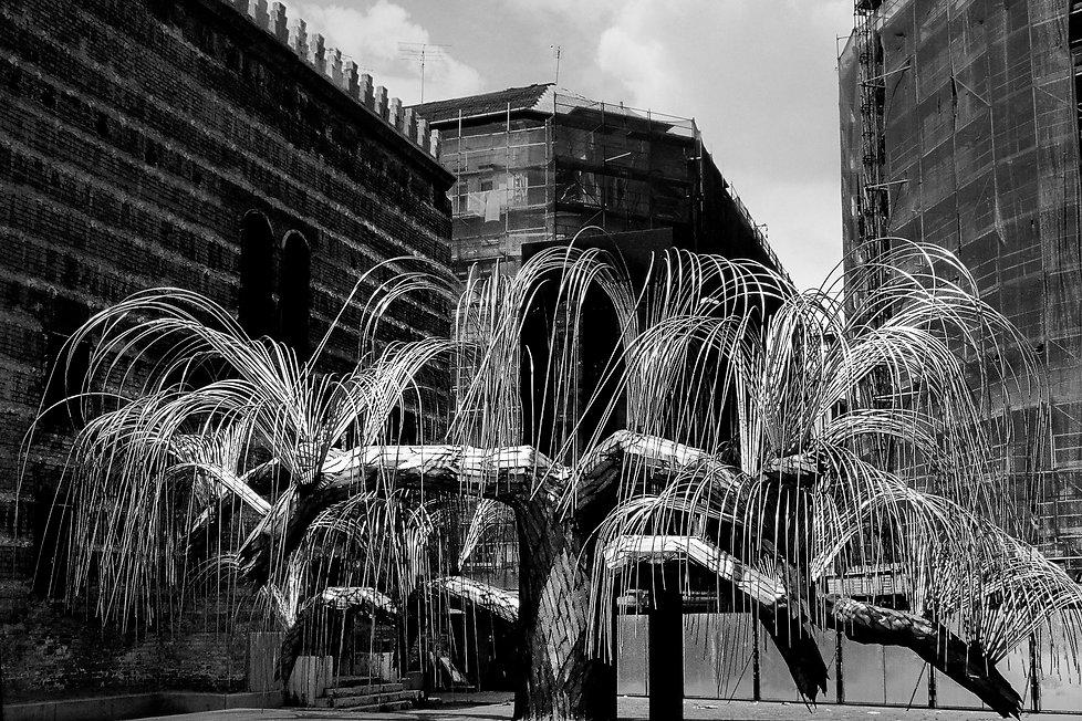 L'Arbre de vie - monument aux victimes de l'Holocauste. Photographie de Jacques Bravo