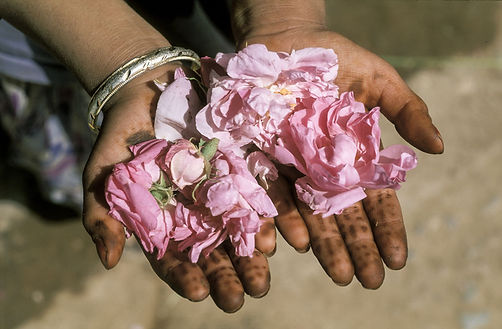 roses mains enfant-3.jpg