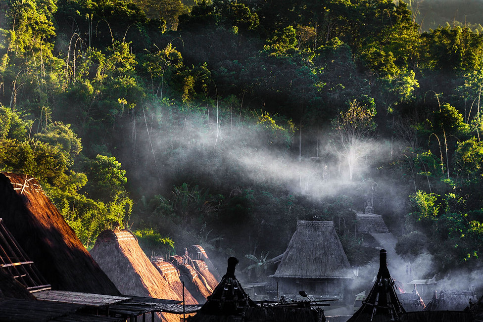Indonesie, ile de flores, village de Bena