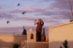 Terrasse de Ryad, Marrakech, Maroc, Jacques Bravo