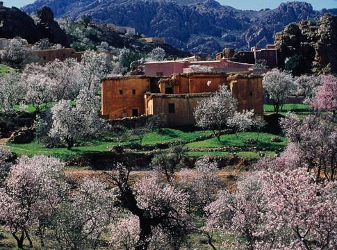 Tafraoute, Maroc