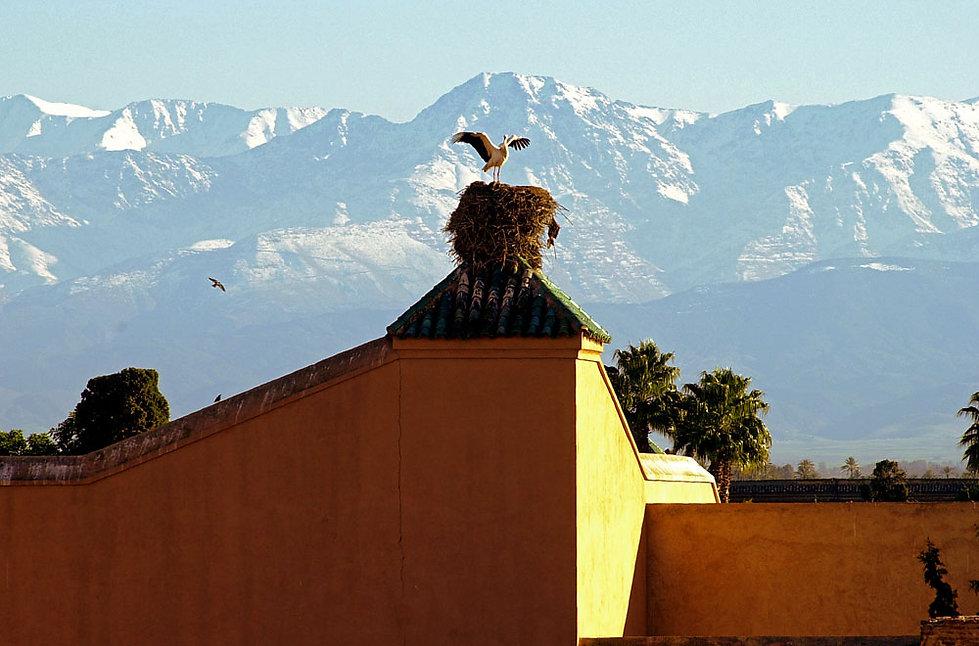 Marrakech, Maroc, Jacques Bravo
