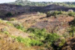 Ile de Sumba,region centre--3.jpg