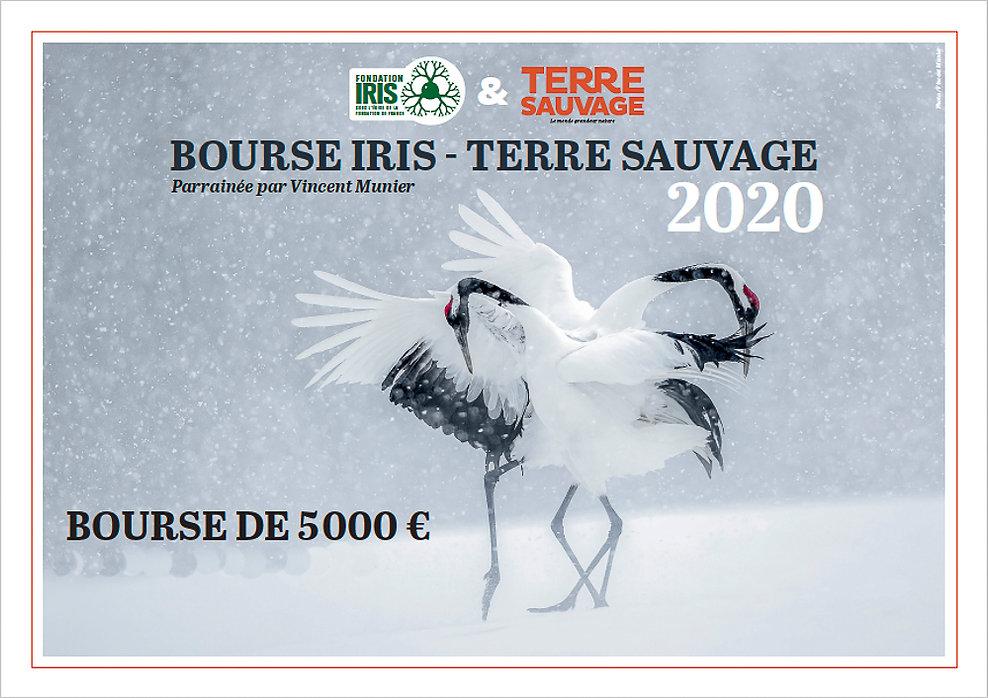 affiche de la Bourse Iris-Terre sauvage, deux oiseaux en parade