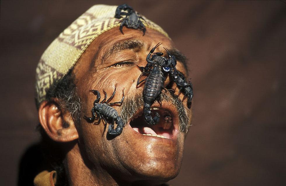 charmeur de serpents et manipulateur de scorpions