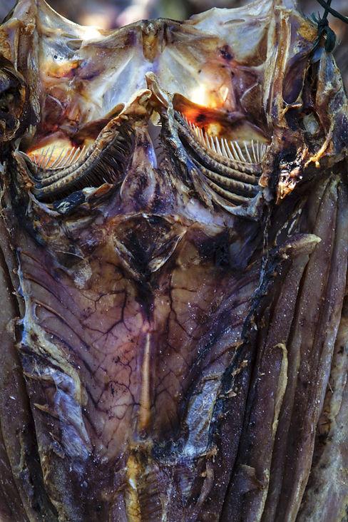 Les poissons séchés du campement de Pêcheur sur l'ile volcanique de Komba en Indonesie, Jacques Bravo, évocation du Mordor
