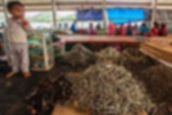 Florès, marché poissons de Labuan Bajo