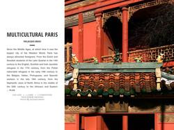 MULTICULTURAL PARIS