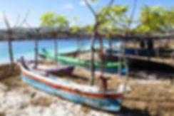 c en indonésie dans les petites iles de la Sonde, Jacques Bravo