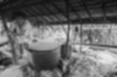 Ile de Pura, bouilleurs de cru--3N_B.jpg