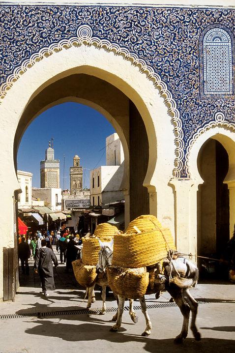 Fès.Bab Bou Jloud, la porte bleue