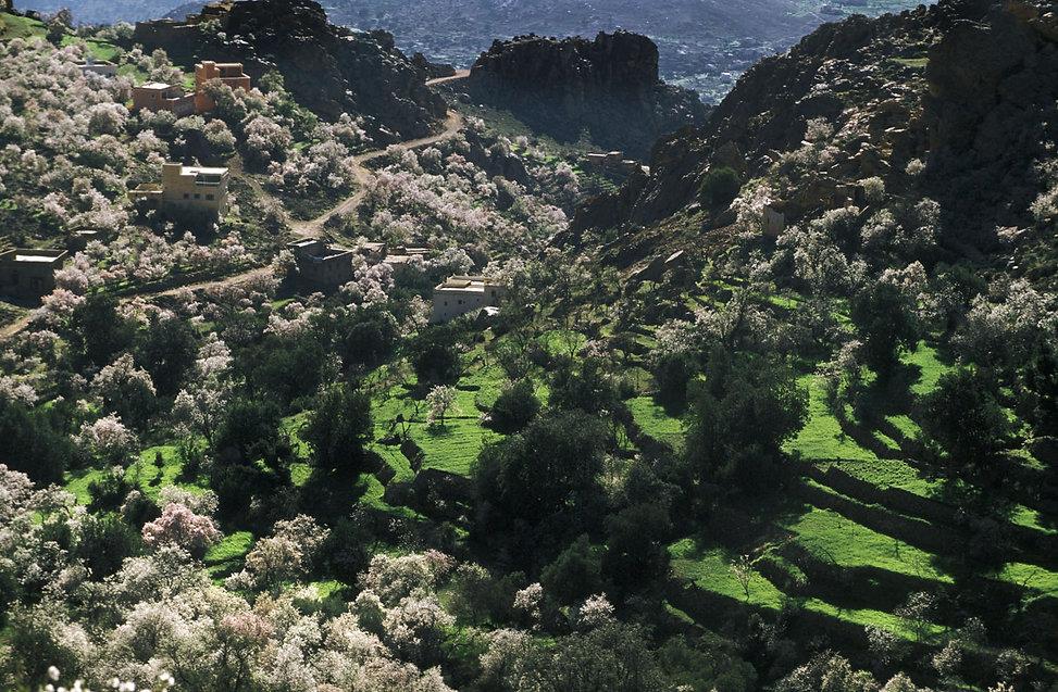 region de tafraoute-21.jpg