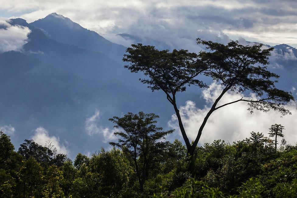 Sur les pentes du Kelimutu, ile de Florès, Indonésie, Jacques Bravo