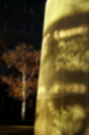 028 arbre béton_DxOFP.jpg