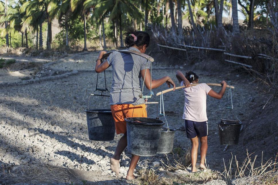 Ile de Savu, Marileba-Indonesie-Jacques Bravo