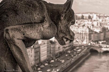 Notre-Dame de Paris-4379-3.jpg