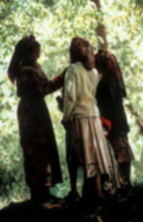 jeunes filles jouant dans la vallée