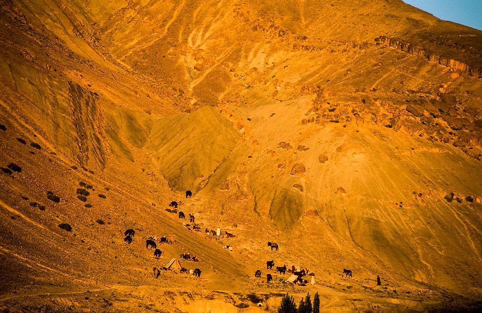campement à flanc de colline des éleveurs pendant le moussem d'Imilchil