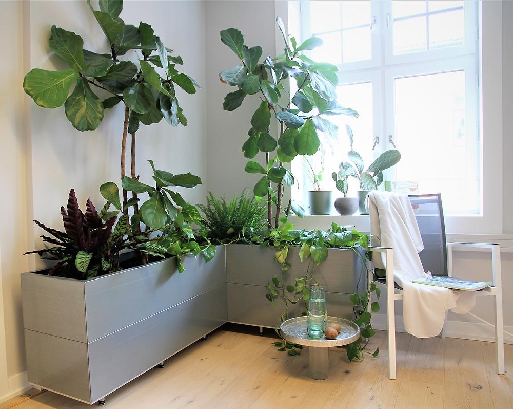 BEDD plantekasser i system inne