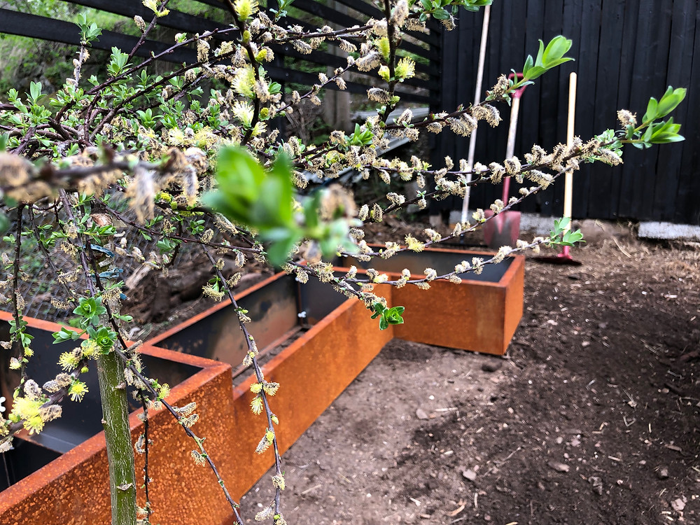 BEDD Plantekasser i rust