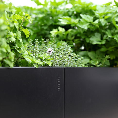 BEDD Plantekasse med urter