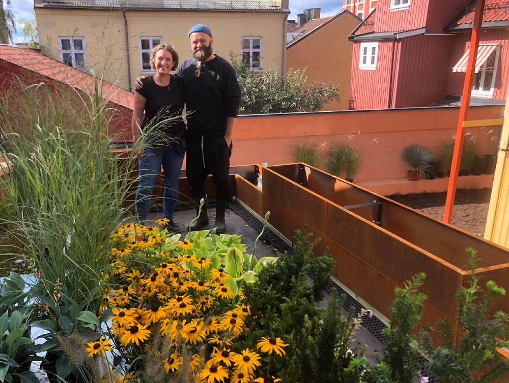 BEDD plantekasser i Tid for hage på TV2