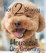 Not 2 Shaggy Housecall Dog Grooming