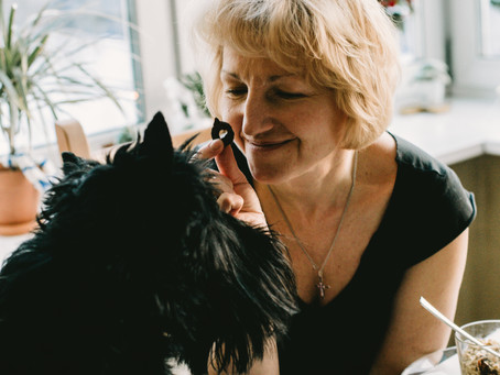 Who Are Housecall Dog Grooming Clients?