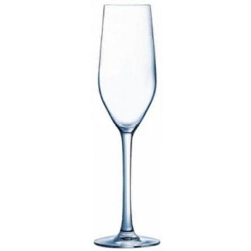 Champagne Flute, 16 cl - Pro Mundi Allegro (Set of 12)