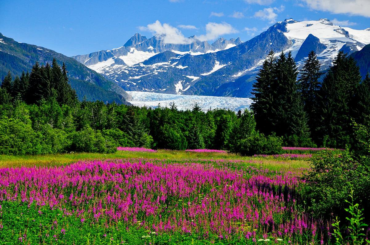 Alaska Pictures 1