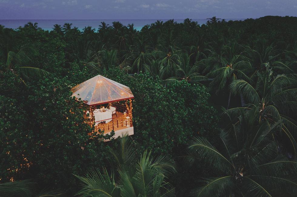 OO_RR_Resort_TreeHouse_Drone_Twilight_35