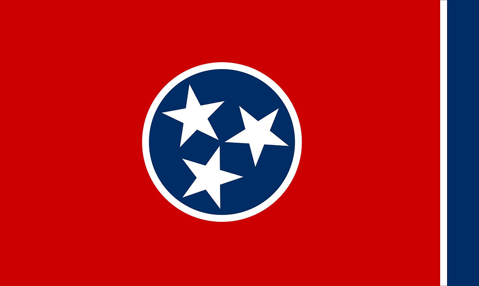 flag-state-Tennessee-Centennial-Expositi