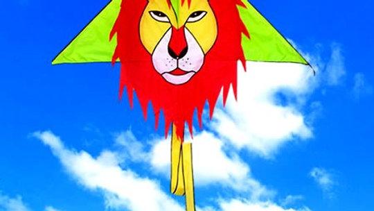 עפיפון אריה שלא נושך, רק גור