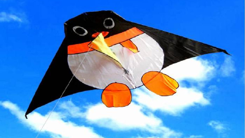 עפיפון פינגווין