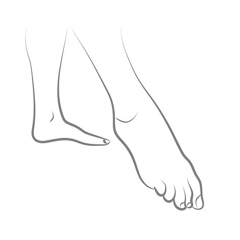 Ankle & Foot