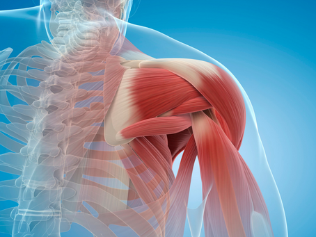 Don't Let Shoulder Pain Dictate Your Lifestyle