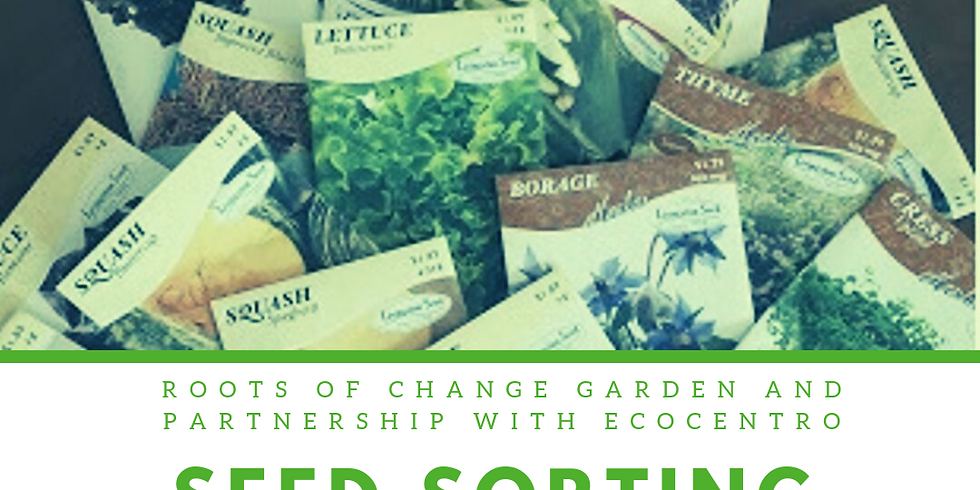Seed Sorting and Giveaway