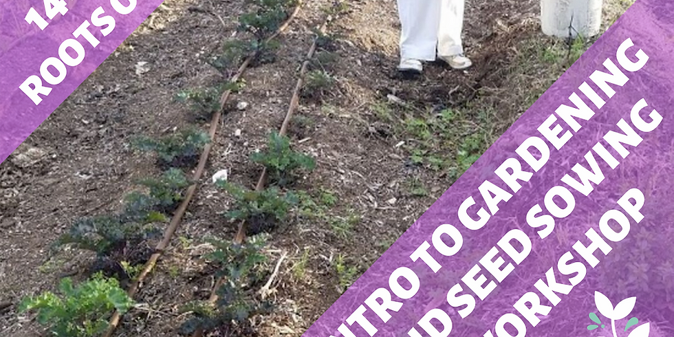 Intro to Gardening and Seed Sowing Workshop
