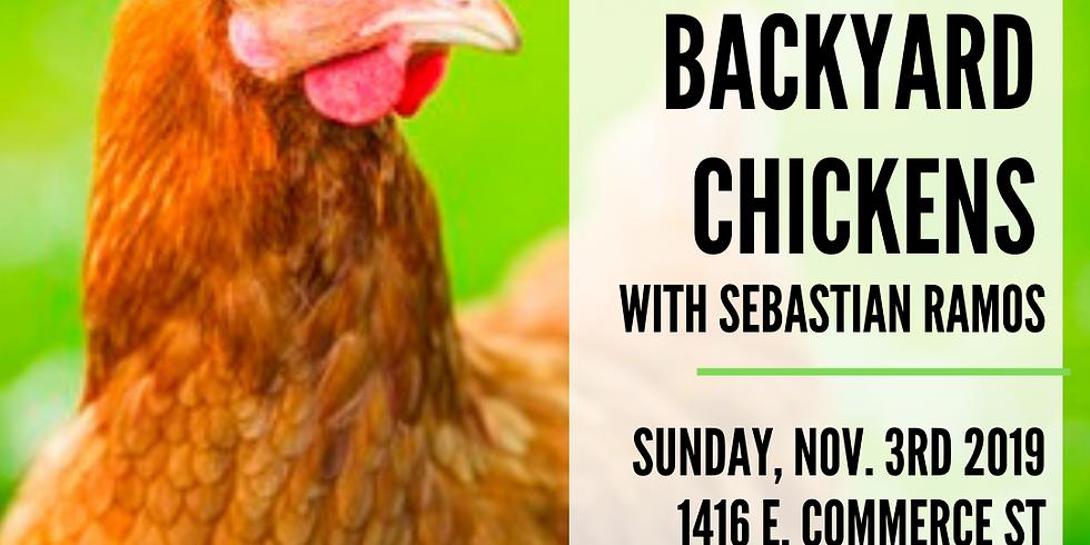 Intro to Backyard Chickens
