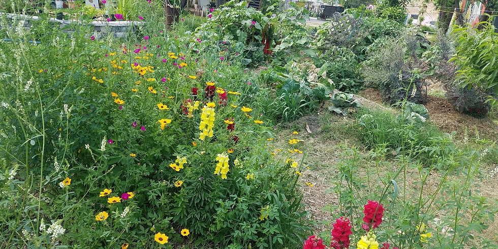 Earth Day Garden Workday | Dia de Trabajo en el Jardin