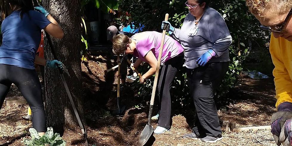 Garden Workday | Dia de Trabajo en el Jardin  (1)