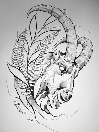 Steinbock - Tattoovorlage