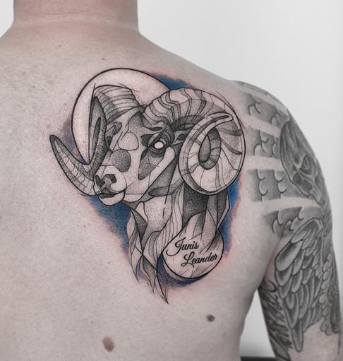 Widder Tattoo
