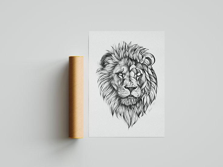 Druck - Löwe