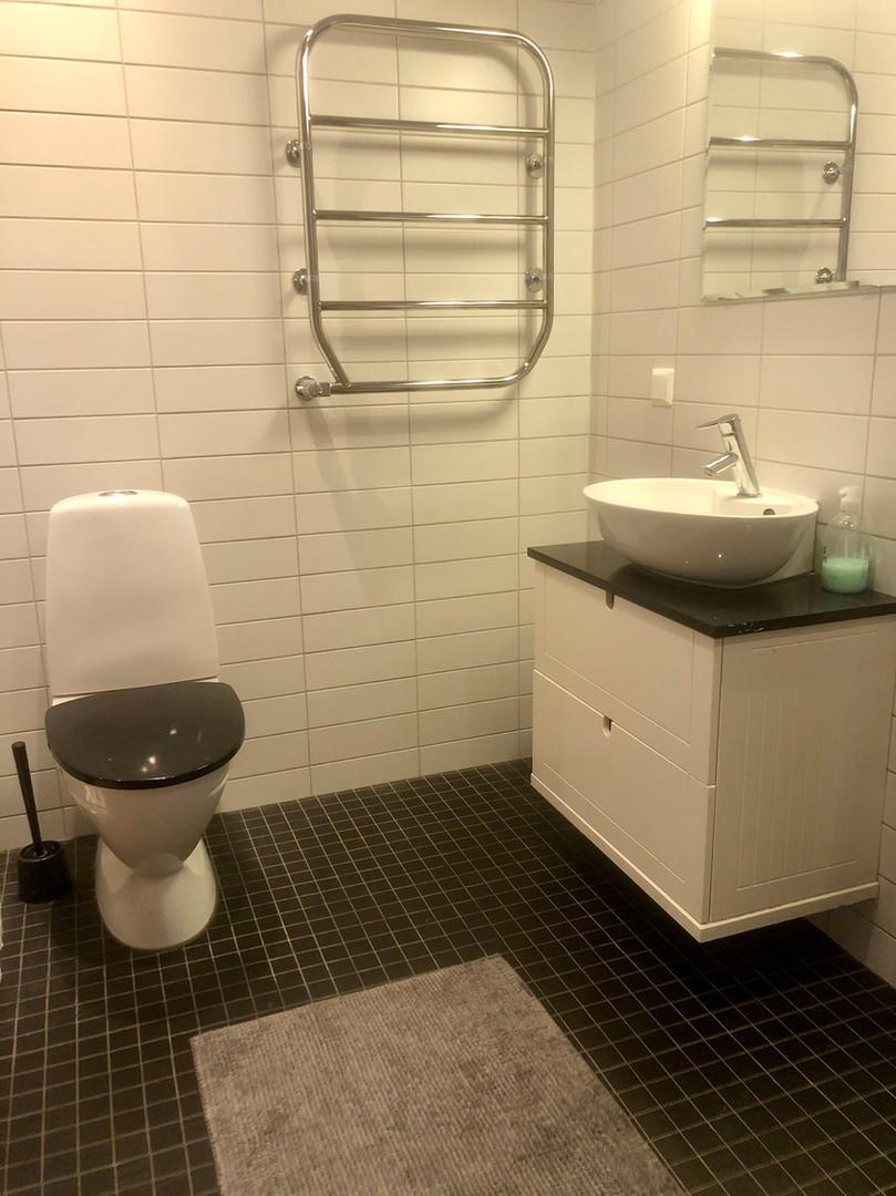 Badrumsbild Toalett.jpg