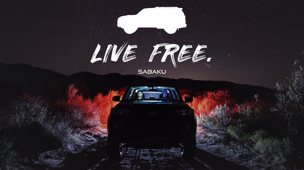 LIVE FREE posteridea3.png