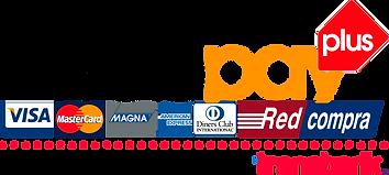 logo-web-pay-plus.png