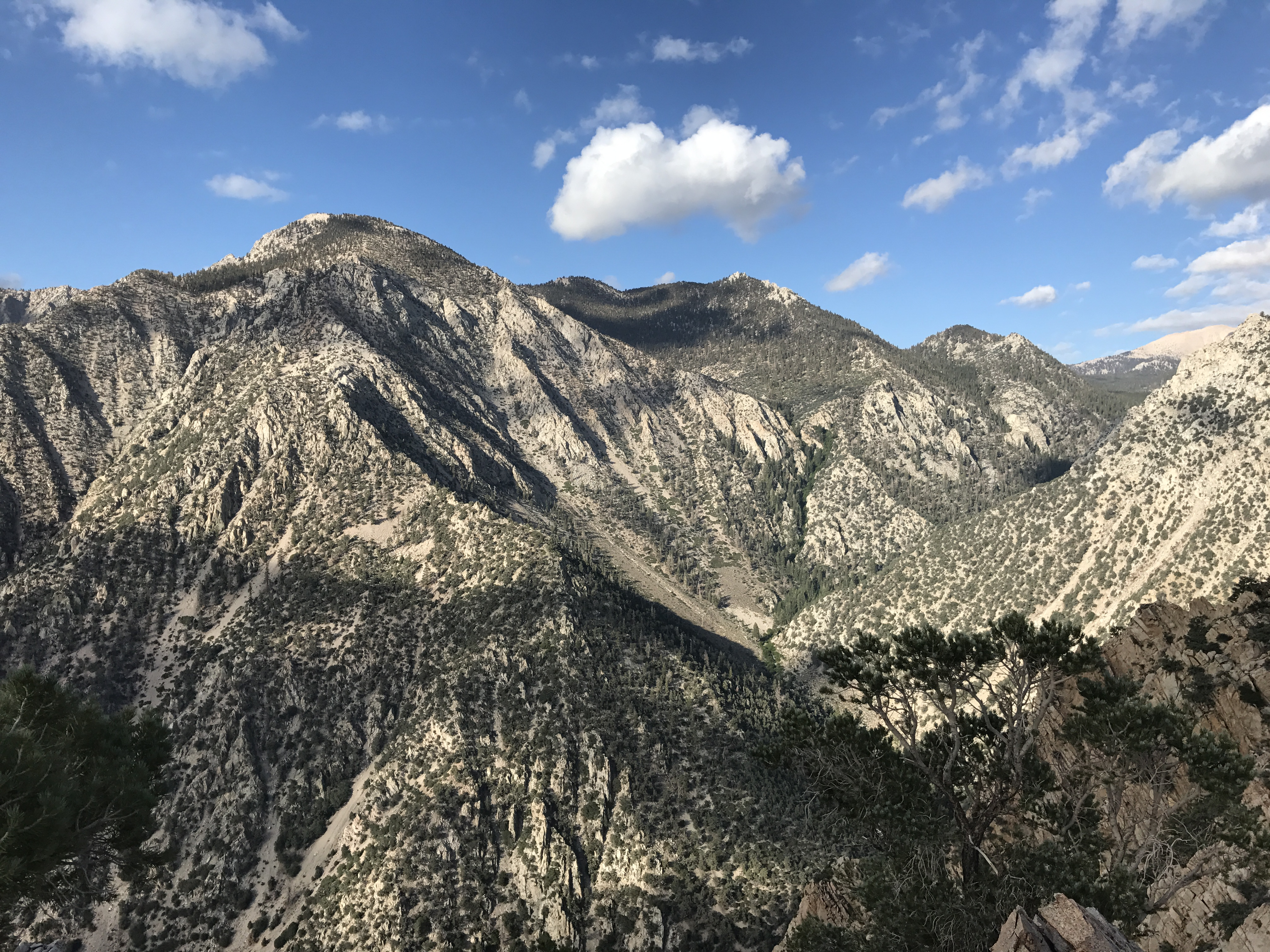 Timosea Peak Ridgeline