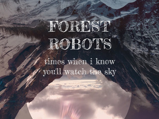 "New Forest Robots Album ""Times When I Know You'll Watch The Sky"" Out 11/01/2019."
